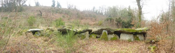 Loch ar Ronfl, Gouezec