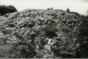 Tumulus de Kermain, Langonnet