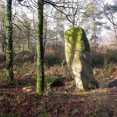Menhir de Prat-menhir