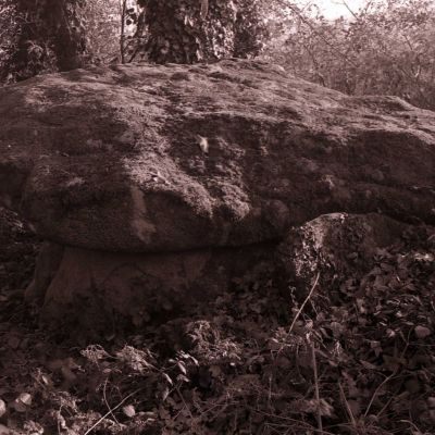 Dolmen de Parc er Crueno © DRAC