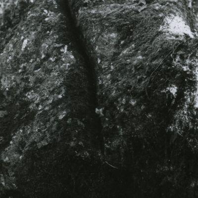Eperon barré du bois de Kerbescont © J.Lody